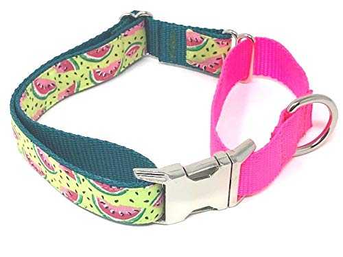 Big Pup Pet Fashion Summer Print Martingale Dog Collar with Colorful Pink and Green Watermelon (L 1'' X 18-26'')