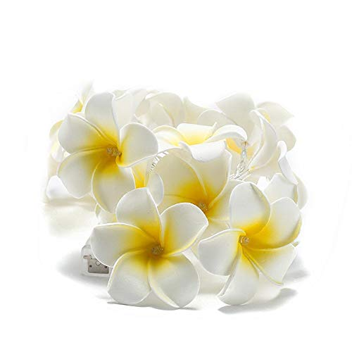 GXOK LED Lights Plumeria Flower 10 Ft/3M 20 LEDs Battery Powered Indoor Outdoor Decor,Landscape Lights,Garden Decoration -