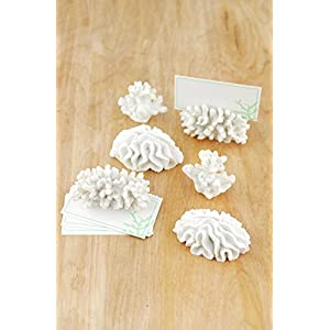 Place Card Holder Coral (Set of 6) - Excellent Home Decor - Indoor & Outdoor 50