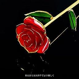 Amazon 人気 彼女 プレゼント 薔薇 花 Forgifting 24k ゴールドローズ 保存された樹脂 金メッキローズ バレンタインデー 母の日 結婚記念日 結婚式 誕生日に適用 永遠のブルーばら 透明スタンド付き プリザーブドフラワー オンライン通販