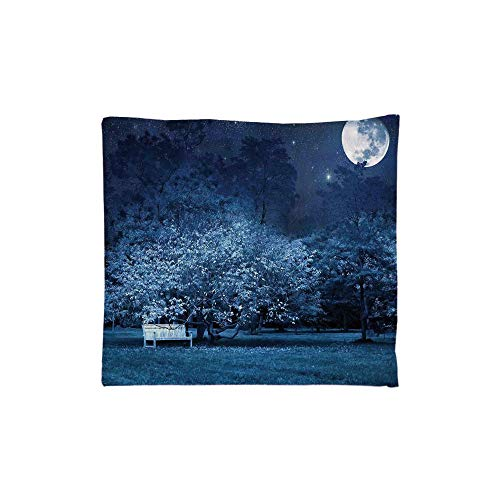 - Indoor/Outdoor Square Seat Cushion,Comfort Memory Foam Chair Pad,Fantasy House Decor,Surreal Scene of Full Moon Light Night in Park with Bench Under Tree,Navy White,Fit for Most of Chairs