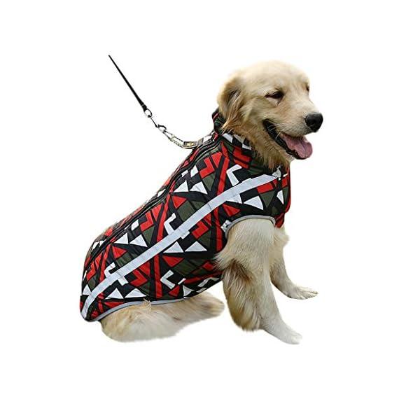 Fossrn Mascota Perro Ropa de Invierno Abrigo Ropa Cachorro Chaleco Motocicleta Caliente Traje