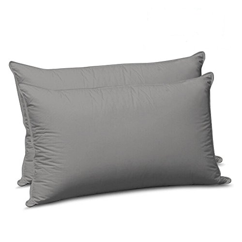 Sleeping Cloud Queen Size Pillowcases Double Brushed Microfiber Pillow Covers Protectors Shams Set of 2 with Envelope Closure End, Wrinkle, Fade, and Stain Resistant (Queen, Dark Grey) (Queen Double Sham)