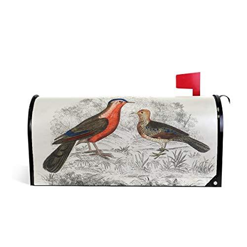 Senuu Vintage Drawing Partridge Bird Magnetic Mailbox Cover Mailwraps for Medium Large Post-Mount Mail Box -