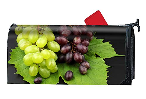 XPNiao Home Mailbox Wrap Grape Leaf Variety Cultivar Four Seasons Magnetic Mailbox Cover