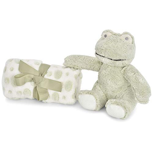 - Zak and Zoey 2 Piece Warm Plush 30 X 30 Baby Security Sleep Blanket Stuffed Animal Set Grey Frog