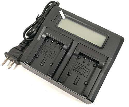- Jiexi LCD-Display Double Mains Battery Charger for Panasonic VW-BC10E VW-VBT190 VW-VBT380 HC-V110 HC-V160 HC-V180 HC-W570 HC-W580 HC-WXF990 HC-V520 HC-V750 Camcorder