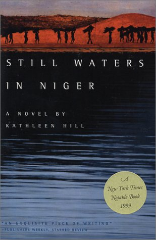 Still Waters in Niger (Triquarterly Books)