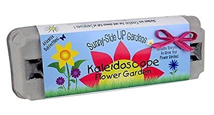 Backyard Safari Company Sunny Side Up Gardens, Kaleidoscope Flower Garden