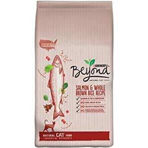 Purina Beyond Natural Dry Cat Food, 3 LB Bag (Salmon and Whole Brown Rice Recipe)
