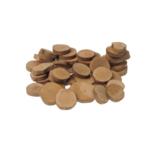 45 Piece Tree Rings Set for Kids Science Observation and Sorting and Counting ()
