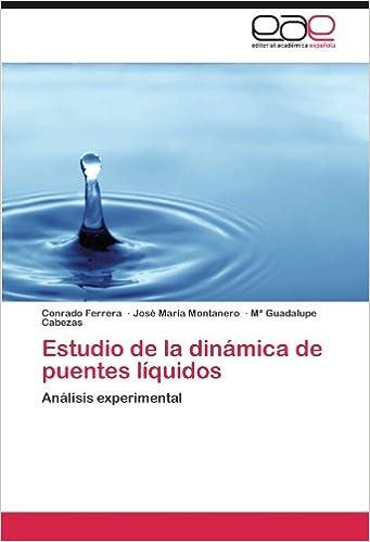 Estudio de la dinámica de puentes líquidos: Análisis experimental (Spanish Edition) (Spanish)