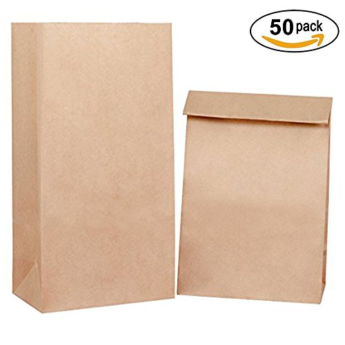 Lunch Bags #4 5x2.95x9.45