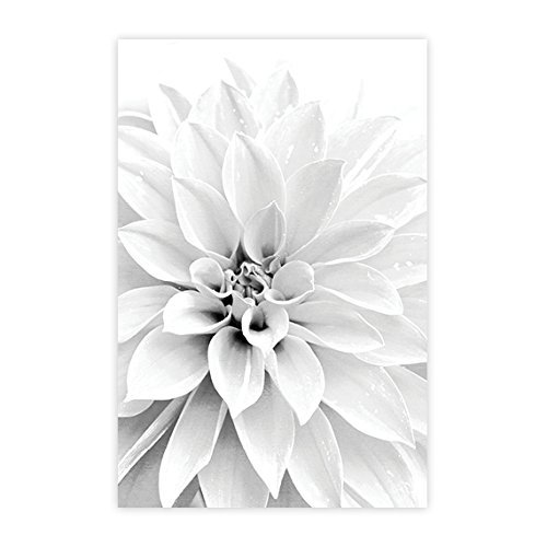 floral wall art bathroom wall decor abstract floral print modern black white flower