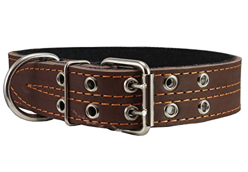 Genuine Leather Dog Collar Padded 1.5