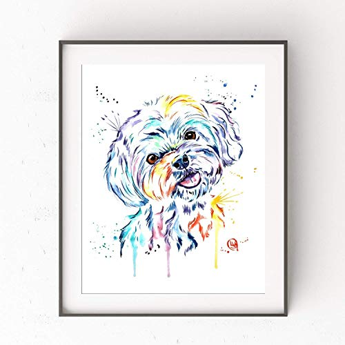 (Havanese Wall Art by Whitehouse Art | Shih Tzu Gifts, Dog Mom, Dog Picture, Pet Decor | Professional Print of Havanese/Shih Tzu Original Watercolor Painting | Artwork For Home Walls | 2 Sizes)