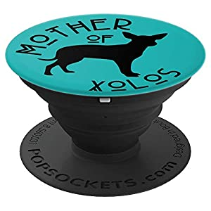 Funny Xolo Xoloitzcuintli Dog Lover Mom on Teal PS14306 2