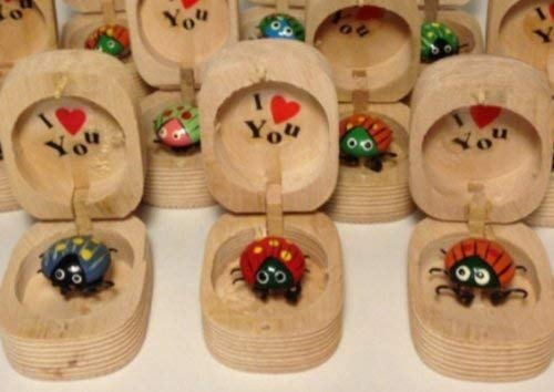 LOT OF 3- TOY WIGGILY LADYBUG LOVEBUG I LOVE YOU IN WOODEN BOX BOBBLE -