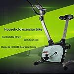 Spin-Bike-Mute-Indoor-Fitness-Spinning-Bici-Palestra-Controllo-Magnetico-Cyclette-Multifunzione-Cardio-Regolabile-per-La-Casa-Montante-Sportivo-Bicicletta-Color-Green-Size-85-54-122cm