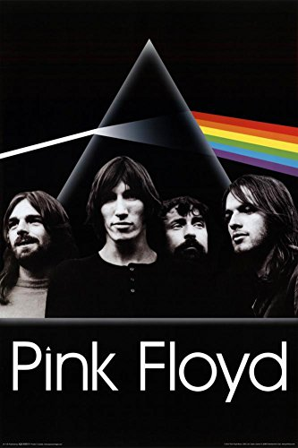 AQUARIUS Pink Floyd Dark Side Group Poster Print, 24 by 36-Inch (Photos Pink Band Floyd)