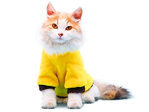 PLS Pet Halloween Hoodie for Cats, Yellow, Medium,