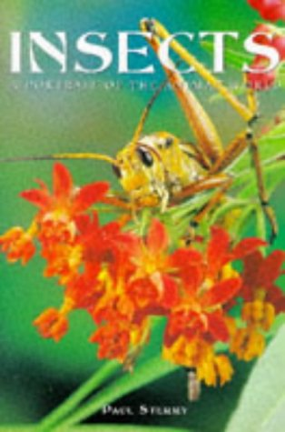 Insects: A Portrait of the Animal World (Portraits of the Animal World)