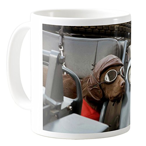 Hound Dog Sweet Tea - AquaSakura - Sweet Dog With Aviator Glasses - 11oz Ceramic Coffee Mug Tea Cup