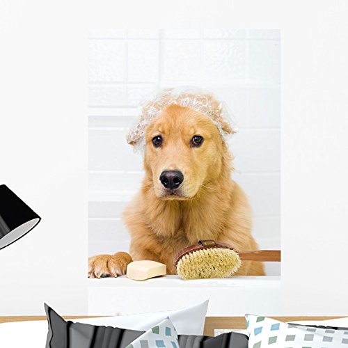 Wallmonkeys Cute Dog Unhappy About Wall Decal Peel and Stick Animal Graphics (24 in H x 16 in W) WM400153 (Retriever Pets Cap Golden)