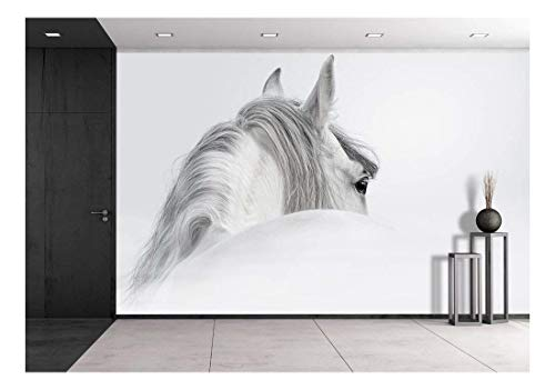 wall26 - Gray Andalusian Horse in a Mist - Removable Wall Mural | Self-adhesive Large Wallpaper - 100x144 inches