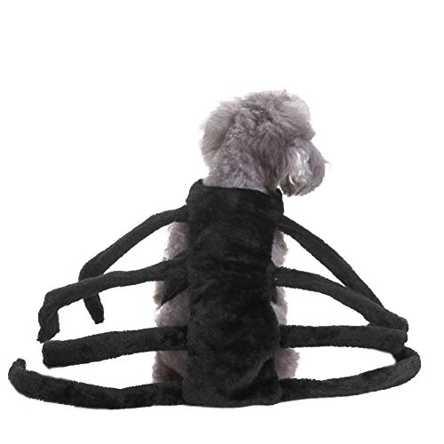 [Tutuba Fashion Halloween Pet Small Dog Spider Harness Costume] (Dog Spider Outfit)