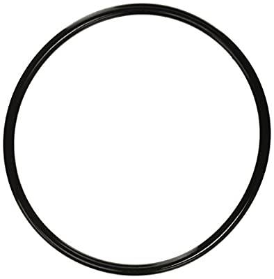 Pentair 350013 Lid O-Ring Replacement Pool and Spa Pump by Pentair