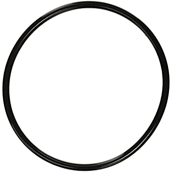 Amazon.com: Pentair 350013 Lid O-Ring Replacement Pool and Spa Pump ...