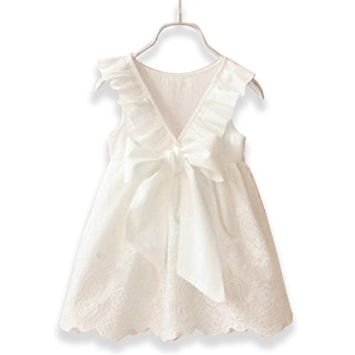 (Doris Batchelor Elegant Summer Baby Girls Tassel Hollow Out Children Lace Dress for Girls Birthday Party Dress Kids Costume White)