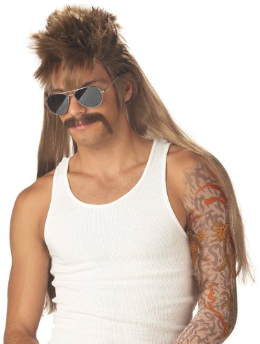 Mullet Wig Costume (California Costumes Men's Mississippi Mudflap Wig & Moustache,Multi,One Size)