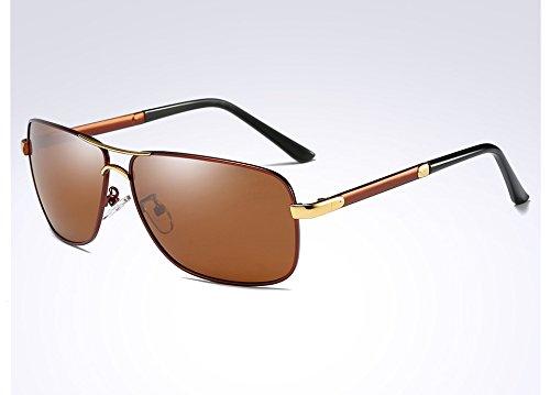 Cadre Hommes pour Soleil Hommes dans Lunettes de Carré L'homme Lunettes de Lunettes Sunglasses TL Polarisé Guide l'alliage brown de wFqTaq