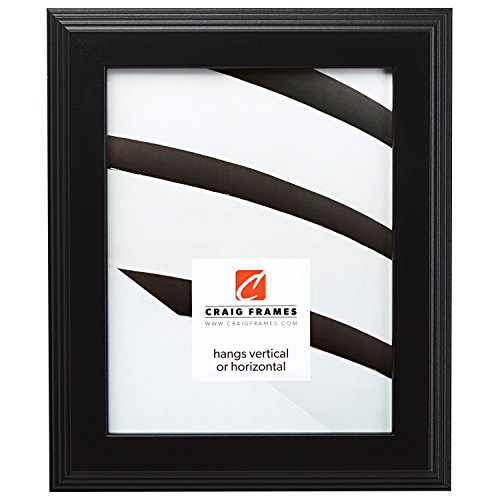 Craig Frames Fw4bk 18x30 Picture Frame Smooth Finish 15 Inch Wide Black Acrylic Facing Foamcore Backing