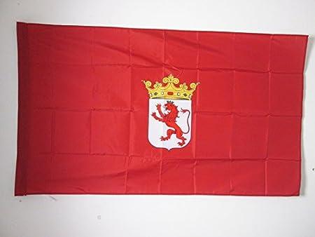 AZ FLAG Bandera de la Provincia DE LEÓN 150x90cm para Palo - Bandera LEÓN EN Castilla Y LEÓN 90 x 150 cm: Amazon.es: Jardín