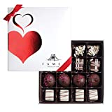 Fames Assorted Chocolate Gift Box- Handcrafted Deluxe Chocolates (16 count)
