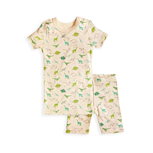 Skylar Luna Boy's Short Sleeve Dinosaur Print Pajamas Set- 100% Organic Cotton Set 3T