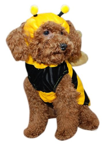 Costume Bumble Bee Dog Small (Bumble Bee Dog Costume Size: Small (8