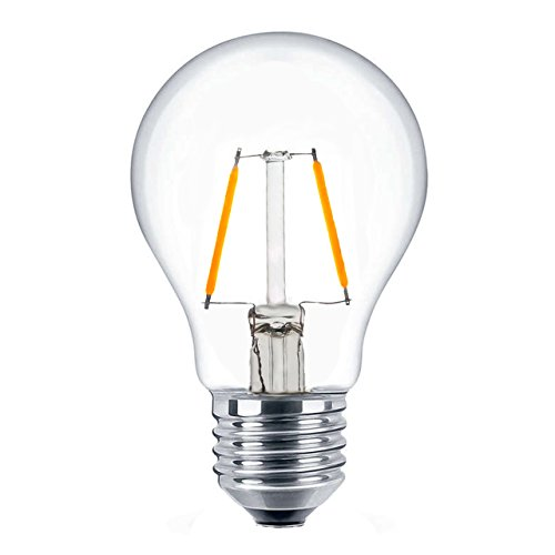 Edison Style Vintage LED Filament Light Bulb E26 Medium Base Light Bulbs for Home 2W 20W Equivalent Low Watt Non-dimmable LED Bulbs, 2700K Soft - Cfl Globe Watt