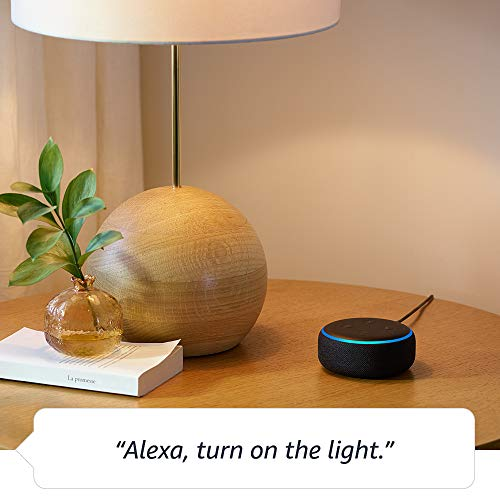 Echo Dot for Home Automation