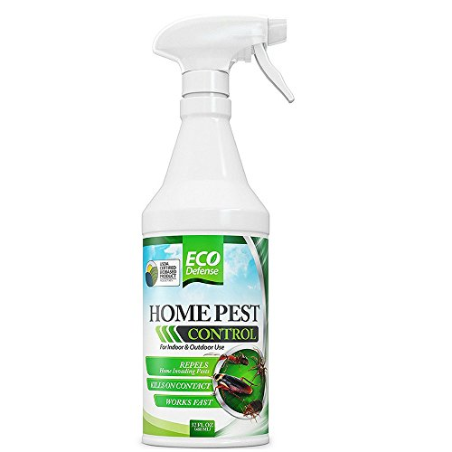 Insect Control Pest Natural (Eco Defense Home Pest Control Spray, USDA Biobased (32 oz))