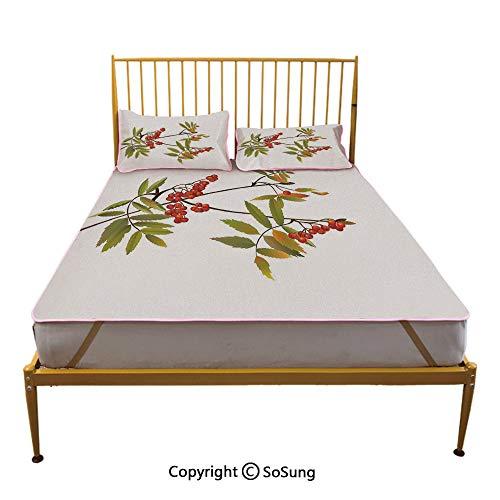 Rowan Creative King Size Summer Cool Mat,Fresh Organic Ashberry Tree Botanical Natural Gardening Plants Illustration Decorative Sleeping & Play Cool Mat,Green Red Brown ()
