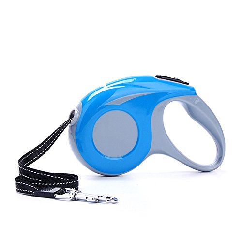 Sturdy Dog Leash