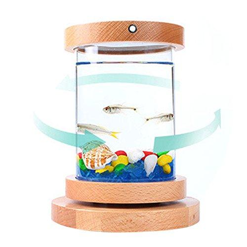 Petacc Pecera Mini LED Pecera de vidrio recargable acuario rotatorio con tapa de haya y soportes: Amazon.es: Productos para mascotas