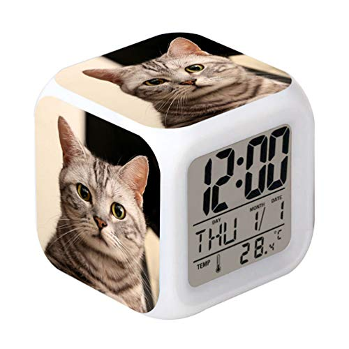 lock Pet Cat Design Creative Desk Table Clock Glowing Electronic Colorful Digital Alarm Clock for Unisex Adults Kids Toy Birthday Present Gift ()