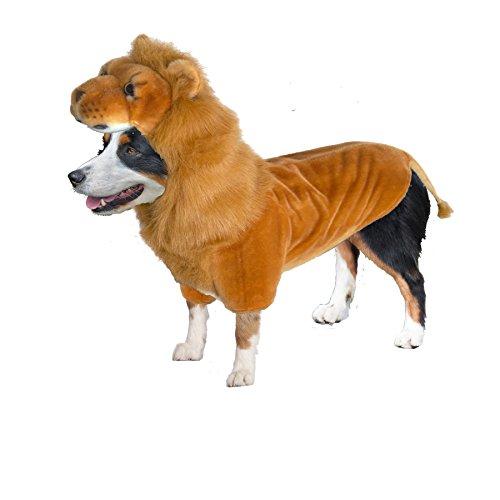 Amazing Pet Products Wannabe Coat Lion- Medium by Amazing Pet Products