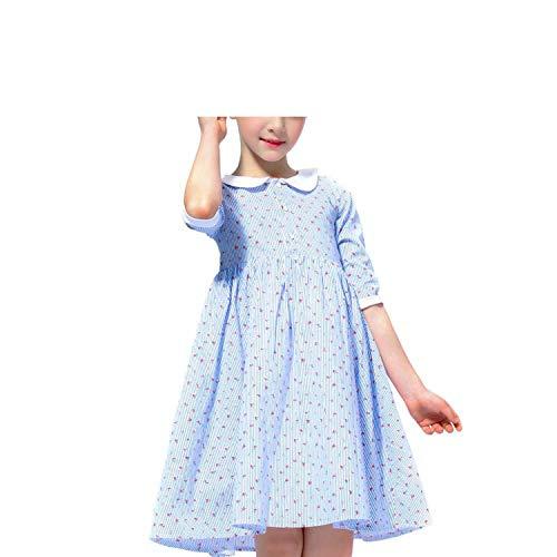 2019 Autumn Spring Kids Dresses for Girls Long Sleeve Party Dress Carnival Costume for Children Toddler Girls Princess Dress,Sky - Collar Kitty Gingham