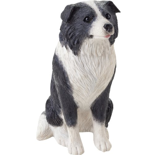- Sandicast Small Size Black and White Border Collie Sculpture - Sitting